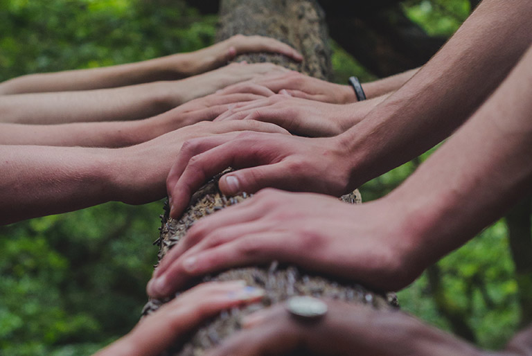 Many hands on a tree trunk - community resources